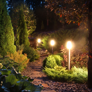 Solar Garden Lights for Your Outdoors - HB